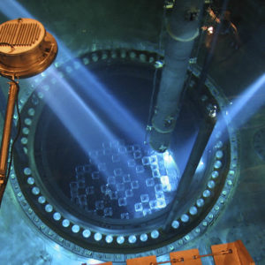 Nuclear Reactor Vessel Inspection